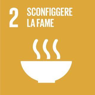 Obiettivo 2: sconfiggere la fame