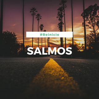 Salmos (Día 11)