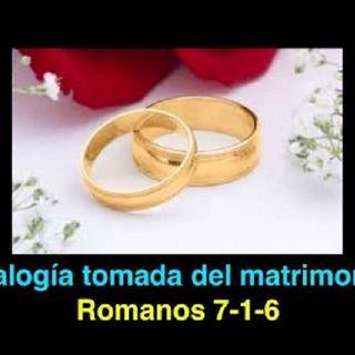 Analogía Tomada del Matrimonio