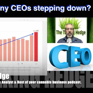 Why are so many CEOs stepping down?