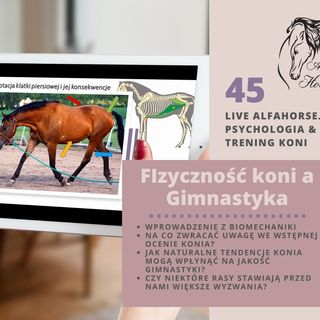 Live 45 Fizyczność koni a Gimnastyka