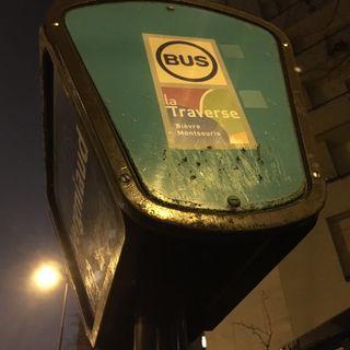 Idée pour supprimer la pollution due aux transports  dans les villes