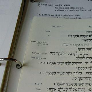 Psalm 69:26 - 29, Oct. 29, 2014
