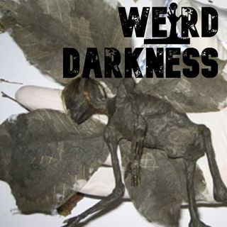 """WENDIGO: THE SHAPESHIFTING CANNIBAL"", ""THE FAIRIES"" (CreepyPasta) and more horrors! #WeirdDarkness"