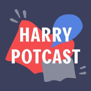 S2 #6 - Special | De Harry Potcast