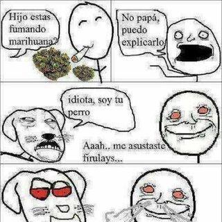 Datos Curiosos Sobre Marihuana