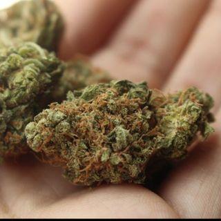 Huele a Marihuan*