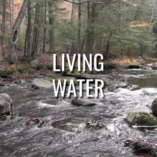 Living Water - Morning Manna #3139