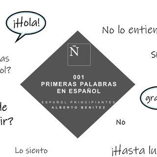 001 Primeras palabras en español - Español principiantes