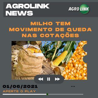 Podcast: Cotação do milho cai na última semana de maio