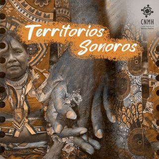 23 Territorios Sonoros - Revista Conmemora en su séptima edición