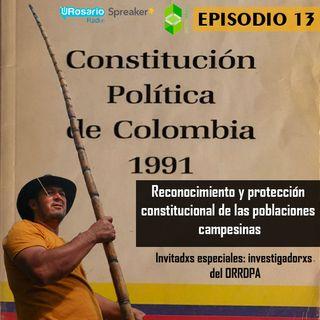 Mesa Reconocimiento y protección constitucional de las poblaciones campesinas