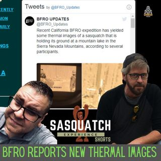 Sasquatch Experience Shorts # 1: BFRO Reports New Thermal Images