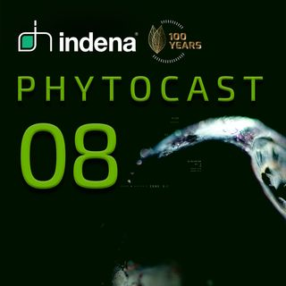 Phytocast 08: Il fitocomplesso