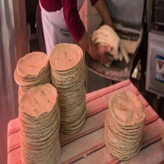 Si habrá aumento en el precio de la tortilla