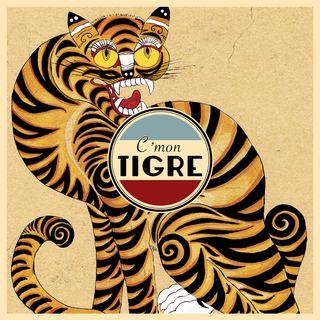 Intervista ai C'Mon Tigre