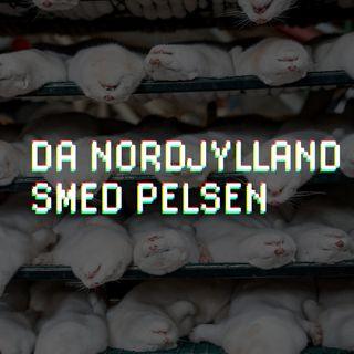 Da Nordjylland smed pelsen
