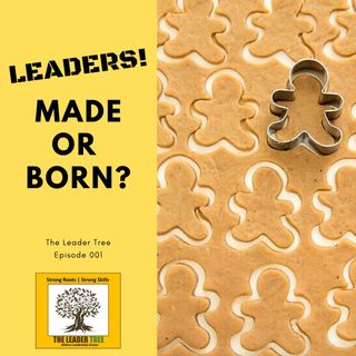 Episode 001-Are Leaders Made or Born - The Leader Tree