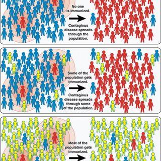 Corona:herd immunity