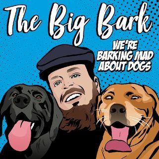 The Big Bark Dog podcast #25 Trailing & Tailing at Bark Park with Jamie Sugrue