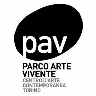 PAV - Parco Arte Vivente di Torino - Intervista al direttore Enrico Bonanate