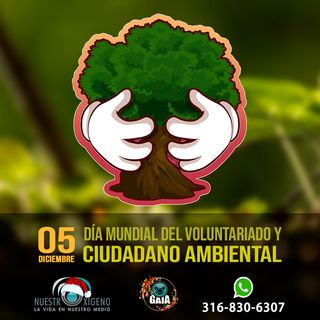 NUESTRO OXÍGENO Día mundial del voluntariado y ciudadano ambiental