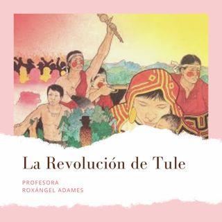 La Revolución de Tule