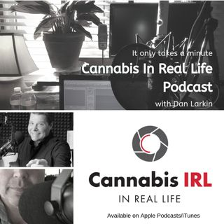 Cannabis In Real Life Podcast with Dan Larkin- 026