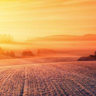Caldo o freddo: cosa preferite?