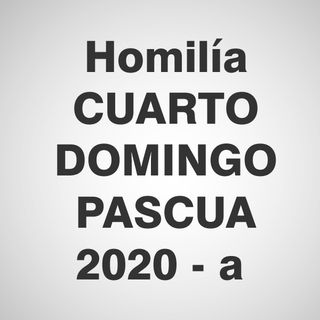 Homilía cuarto domingo de Pascua 2020 - A