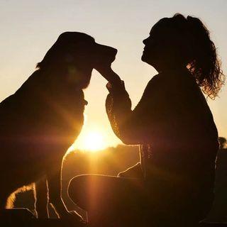 ¿Cómo ayudo a mi hija a afrontar la pérdida de su mascota?