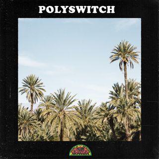 AWS04: Polyswitch