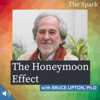 The Spark 067: The Honeymoon Effect with Dr. Bruce Lipton