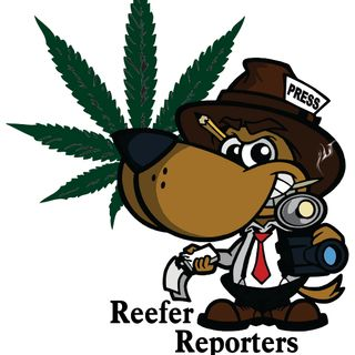 Reefer Reporters - February 18/21 with Kim & Cindy