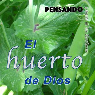 El huerto de Dios (PAE N.13)