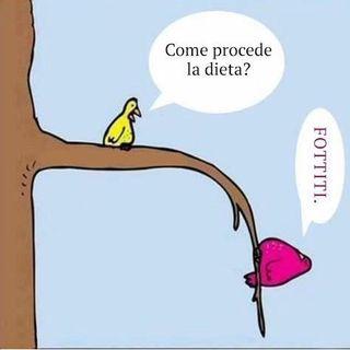 13 - Mi metto a dieta?