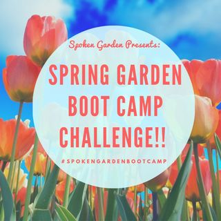 DIY GM Ep71 Join Our 2nd Annual Spring Garden Boot Camp Challenge!