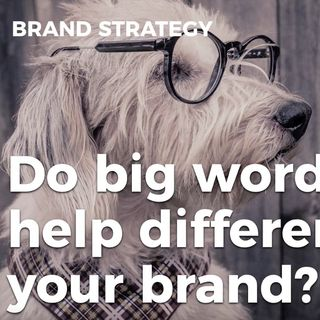 Do Big Words Help Differentiate Your Brand?