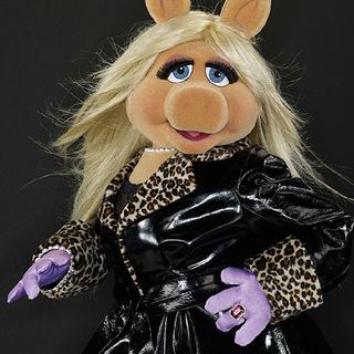 Miss Piggy Schumer Hospitalized For Extreme Morning Sickness Let's Be Mean Shall We?👍😎🔥