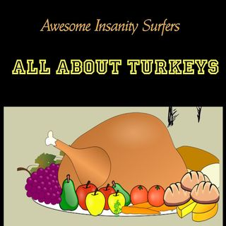 All About Turkeys