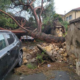 Maltempo: nubifragi e danni nel Vicentino