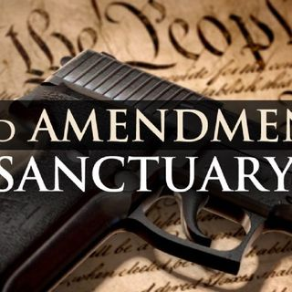 Episode 1246 - Missouri County Enacts SAPA & Florida Representative Calls for 2A Sanctuary
