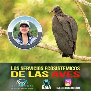 NUESTRO OXÍGENO los servicios ecosistémicos de las aves - Ornitóloga Ana Maria Castaño Rivas