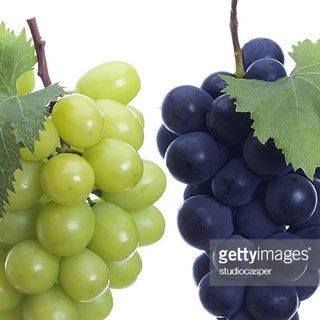 Ride the vine in an Uber!  POLL RESULTS