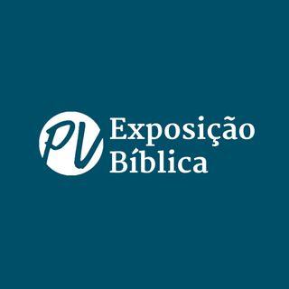 Carlos Nogueira (Tote) - O valor de passarmos pela instabilidade