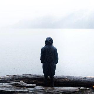 The Little Bigfoot Of Lake Cushman...