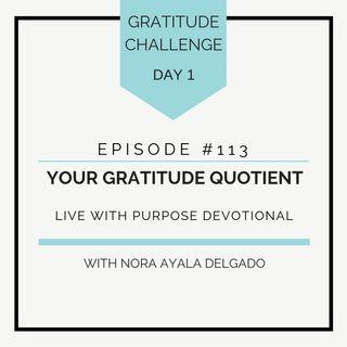 #113 GRATITUDE: Your Gratitude Quotient