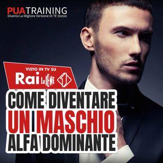 #8 Maschio Alfa Dominante