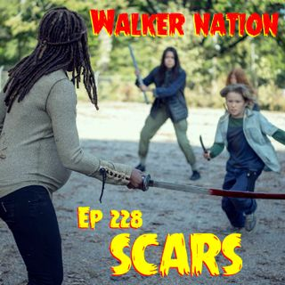 """Ep 228 """"Scars"""" TWD 914"""