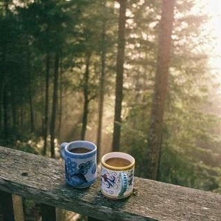 Buongiorno con gli esercizi della mattina! 🌸